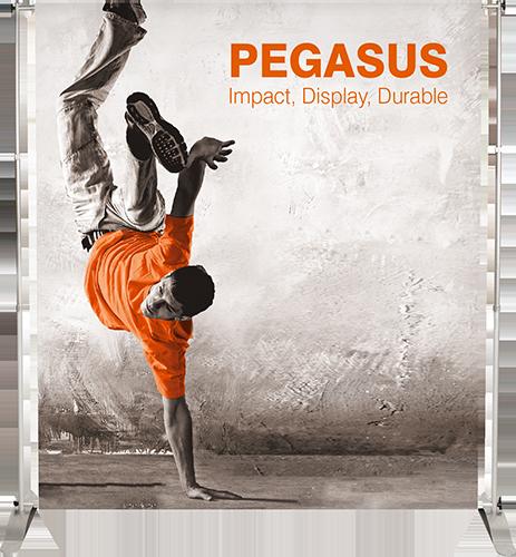 Pegasus-2014